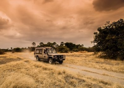 Safari in Style with BJORN AFRIKA