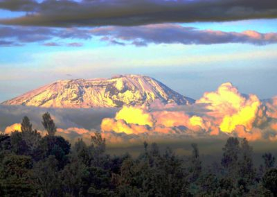 Kilimanjaro on Safari with BJORN AFRIKA