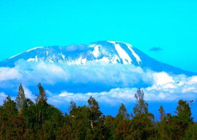 Kilimanjaro on Safari with BJORN AFRIKA ©