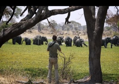 Wildlife and Photographic Safaris at Chem Chem with BJORN AFRIKA